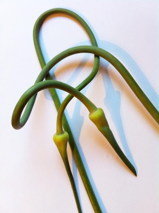 GarlicScapes